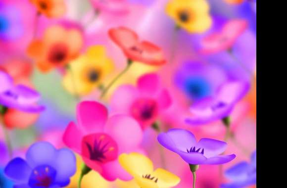 Colorfull flowers