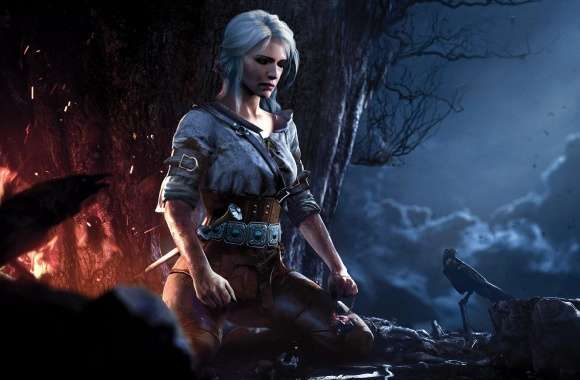 The Witcher 3 Wild Hunt Ciri wallpapers hd quality