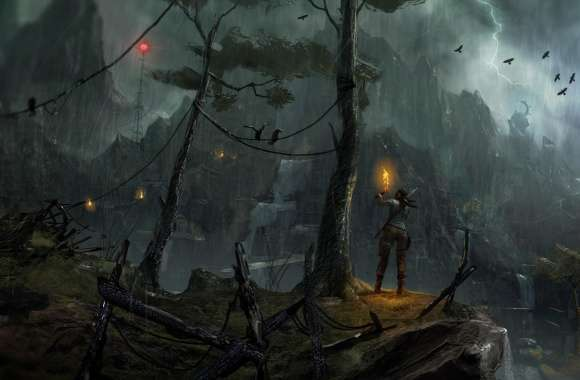 Tomb Raider 2013 Night Concept Art wallpapers hd quality