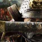 Shogun Total War hd desktop