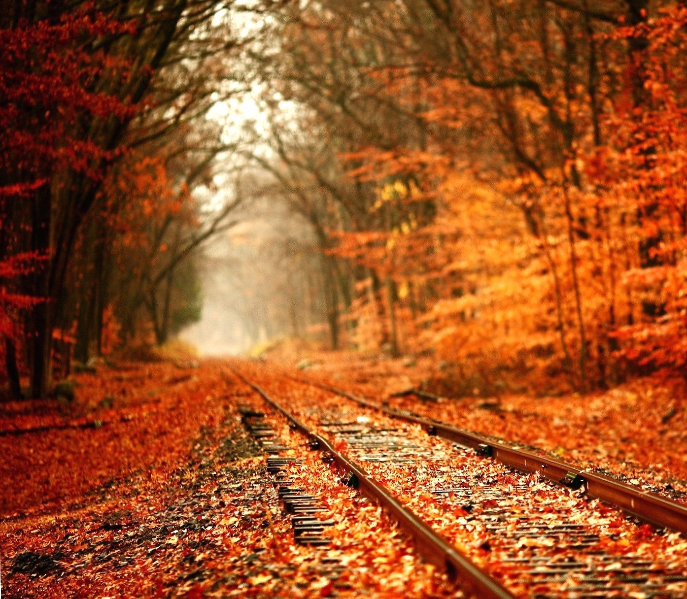 Autumn Railroad wallpapers HD quality