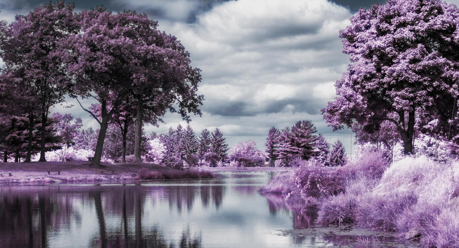 Infrared Pond wallpapers HD quality