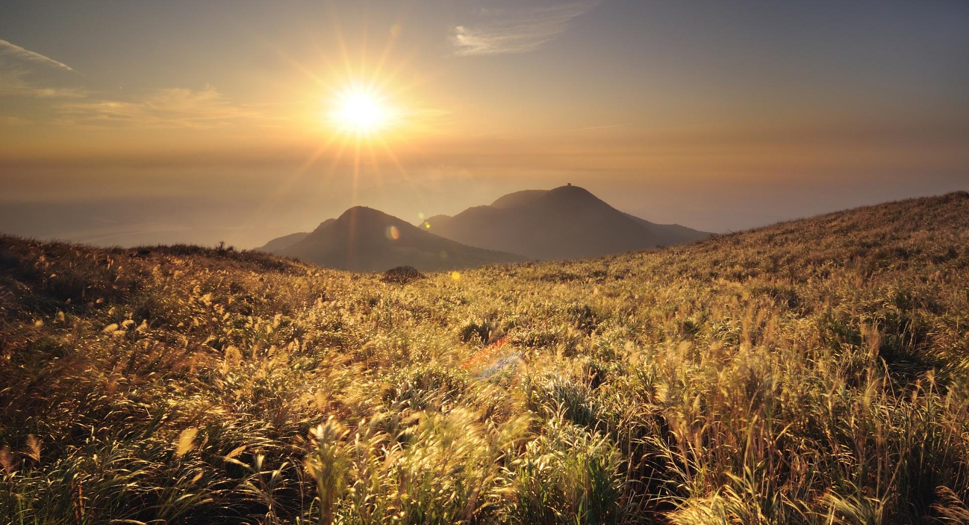 Mountain Top Meadow wallpapers HD quality