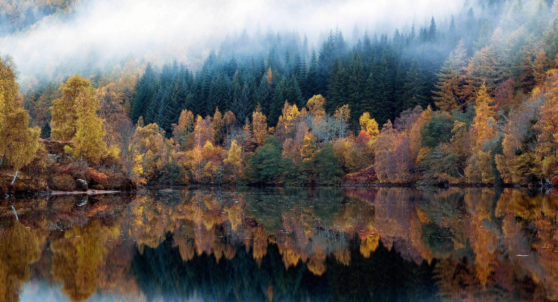 Multicolored Autumn wallpapers HD quality