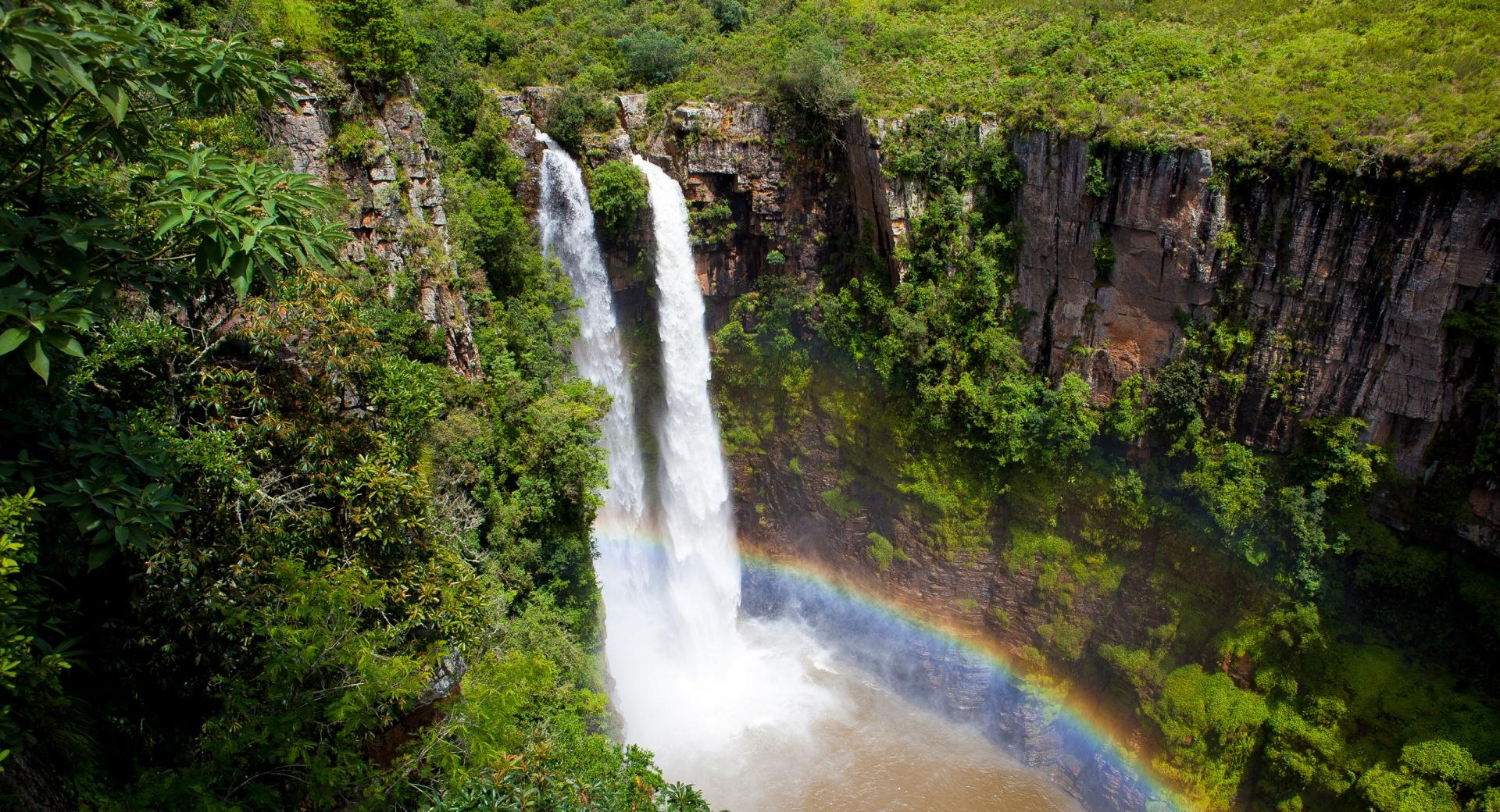 Spectacular Jungle Waterfall wallpapers HD quality