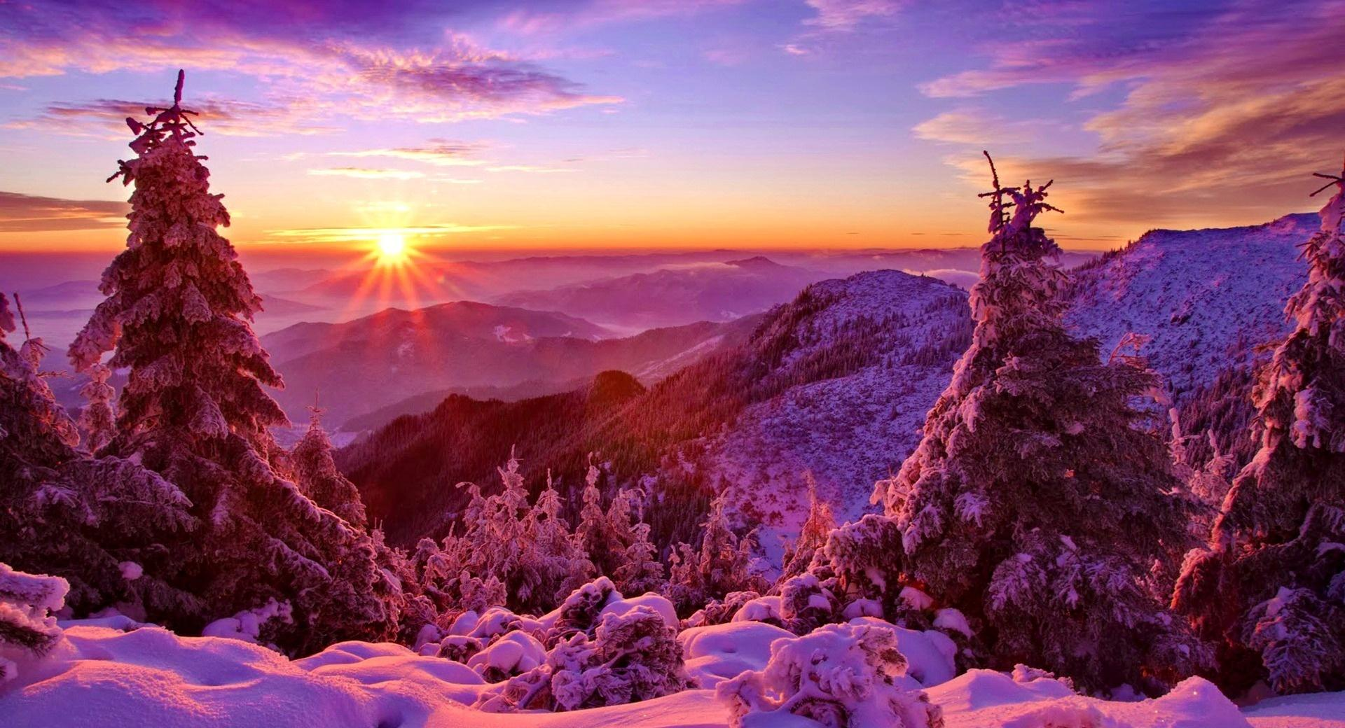 Spruces On Mountain Sunset wallpapers HD quality