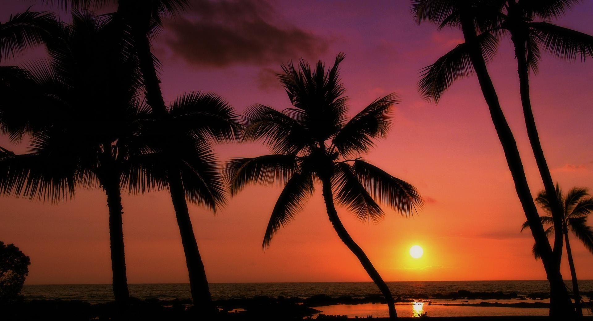 Tropical Sunset wallpapers HD quality