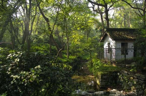 A Little House In Hangzhou wallpapers hd quality