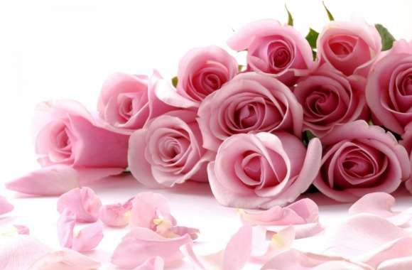 Pink Roses Bouquet wallpapers hd quality