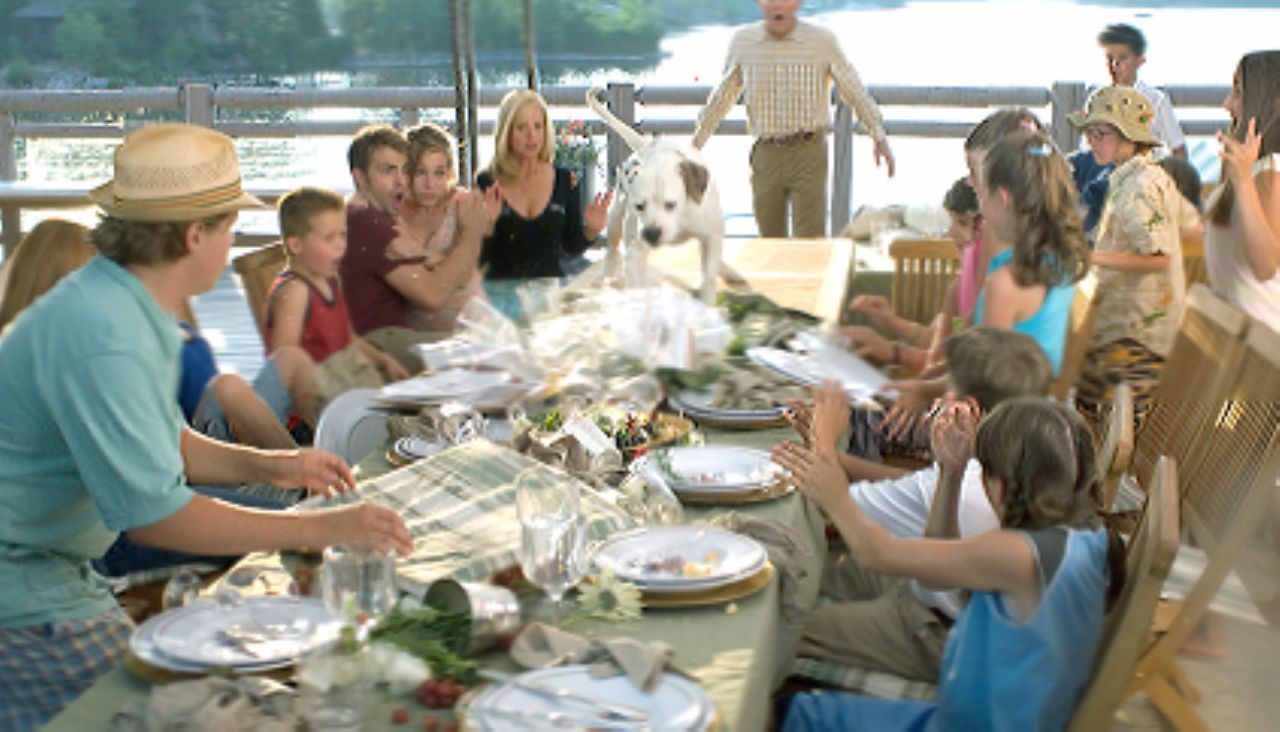 Cheaper by the Dozen 2 wallpapers HD quality
