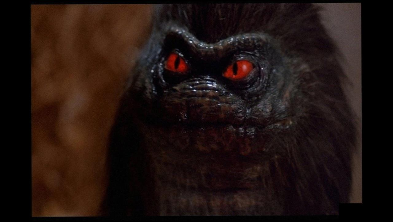 Critters wallpapers HD quality