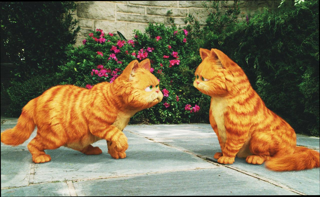 Garfield A Tail of Two Kitties wallpapers HD quality