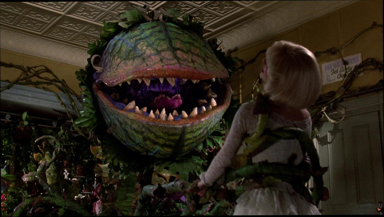 Little Shop of Horrors wallpapers HD quality