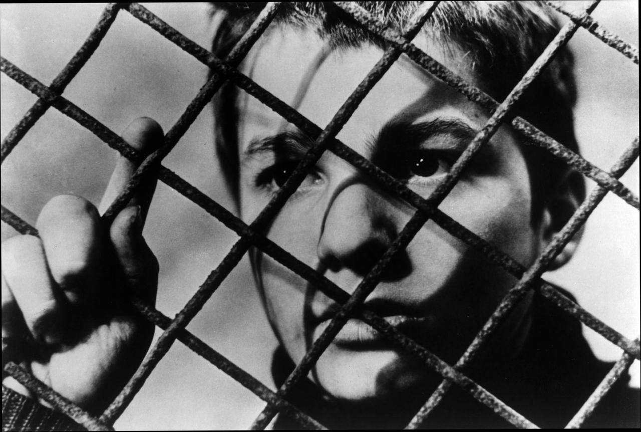 The 400 Blows wallpapers HD quality