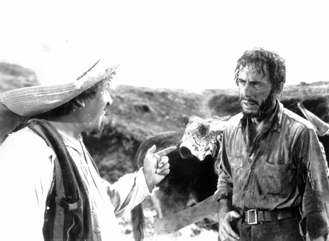 The Treasure of the Sierra Madre wallpapers HD quality
