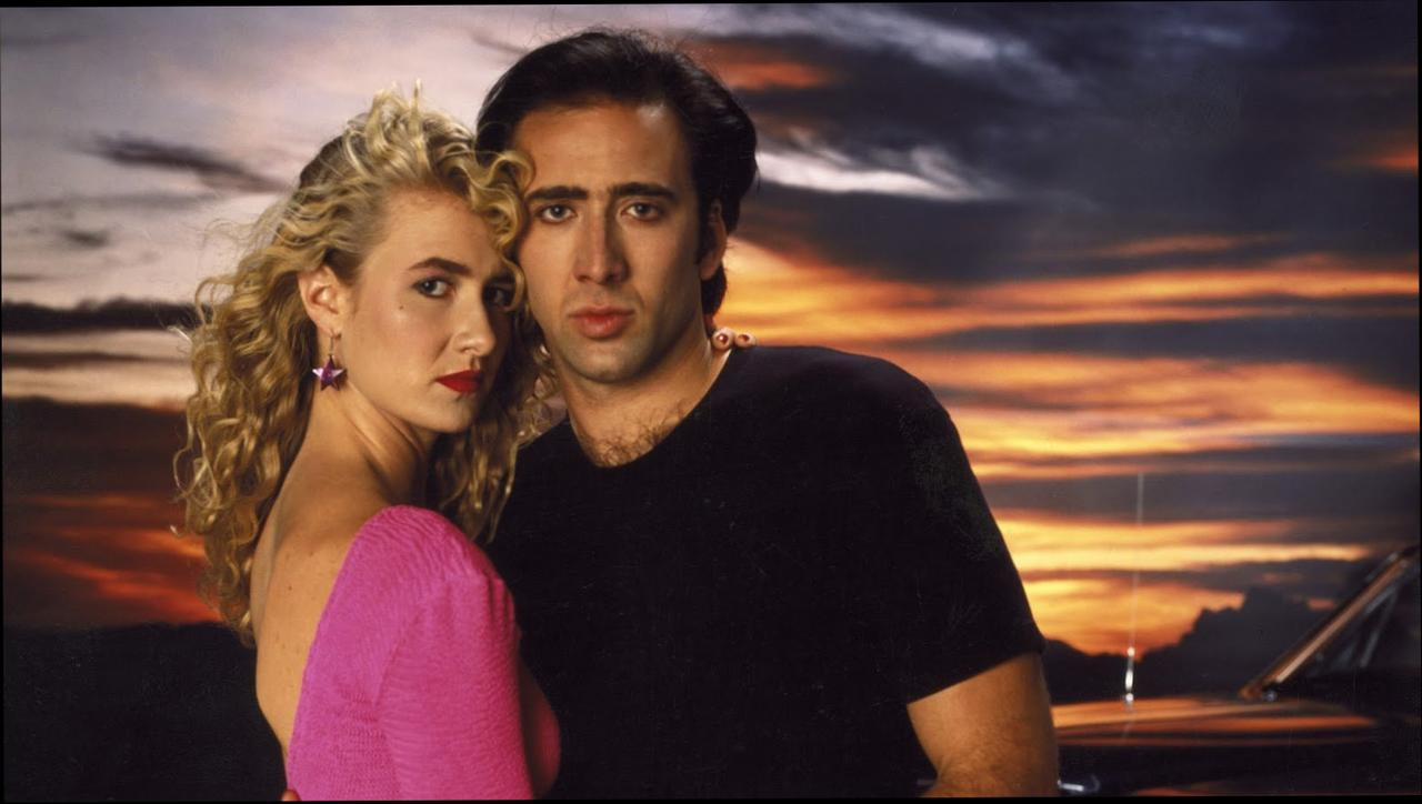 Wild at Heart wallpapers HD quality