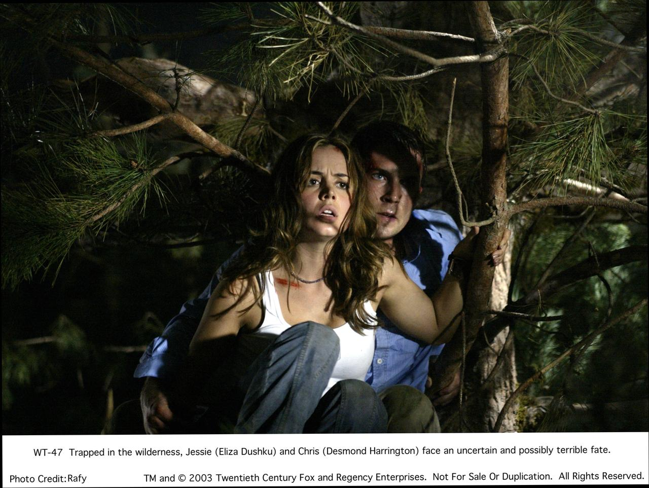 Wrong Turn wallpapers HD quality