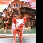 Babe Pig in the City 2017