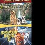 Homeward Bound The Incredible Journey widescreen