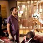 Horrible Bosses hd wallpaper