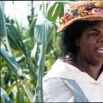 The Color Purple image