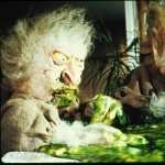 Troll 2 background