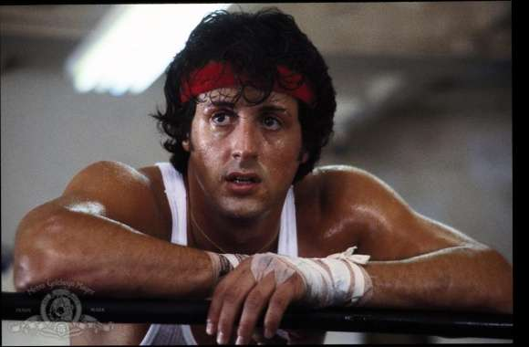 Rocky II wallpapers hd quality