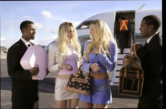 White Chicks wallpapers hd quality