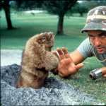 Caddyshack new wallpapers
