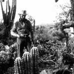 The Treasure of the Sierra Madre download