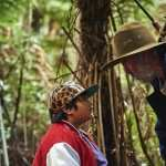 Hunt for the Wilderpeople free download