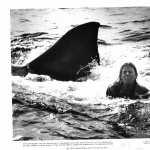 Jaws 2 hd wallpaper